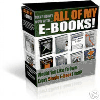 EVERY EBOOK I SELL.zip